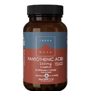 Terranova Pantotenska kiselina (B5) A50 cps